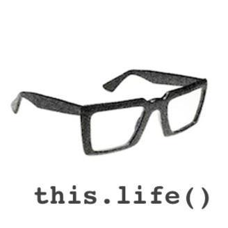 developer-life